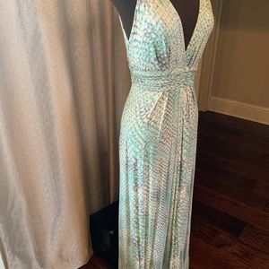 EUC Tart Maxi Dress